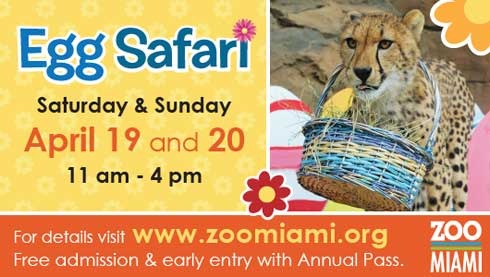 Spring is in the air – photo shoots at Zoo Miami